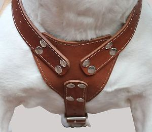 Brown Leather Dog Harness