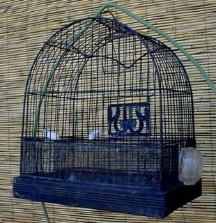 Antique Vintage Art Deco Hendryx Canary Parakeet Bird Cage w Glass Feeder Brass