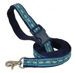 Douglas Paquette Nylon Dog Collars Leads Cayman Blue Hurry Limited Sizes