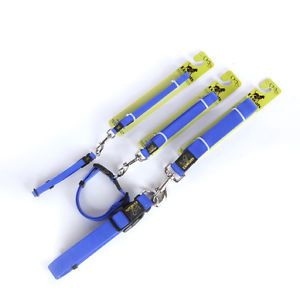 Sky Blue Extra Large Size Pet Dog Safe Durable High Quality Nylon Collar Leash