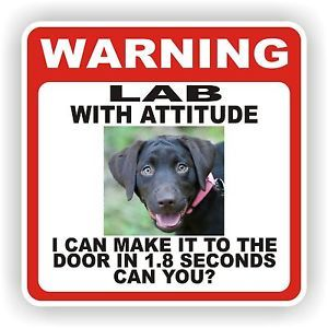 Chocolate Lab Door Warning Decal Sticker Pet Dog