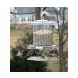 Songbird Essentials SEAWFFF736 All Weather Wild Bird Feeder 6 Quart Clear