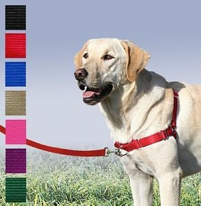 Easy Walk Harness No Pull Premier Gentle Leader Easywalk Dog