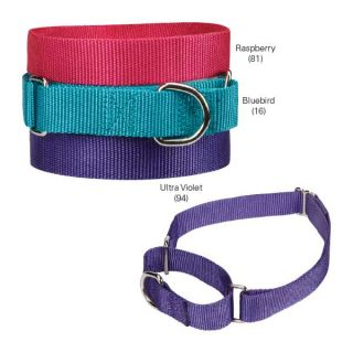 Martingale Dog Collar Guardian Gear Brite Nylon Training Limited Slip No Pull