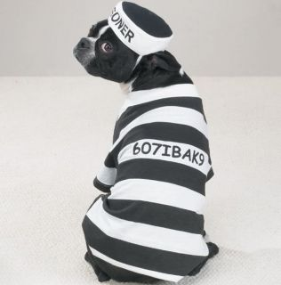 Casual K9 Prison Pooch Prisoner Dog Halloween Costume