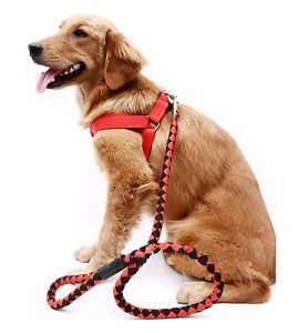 Red Preparation of Nylon Pet Dog Harness and Leash Durable Heavy Duty