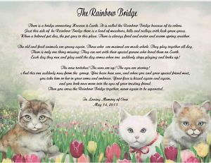 Pet Memorial Poem for Loss of Cat The Rainbow Bridge
