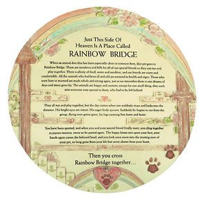 "Remembrance Plaque Pet Memorial Rainbow Bridge Poem Urn 9 5""D 4832"