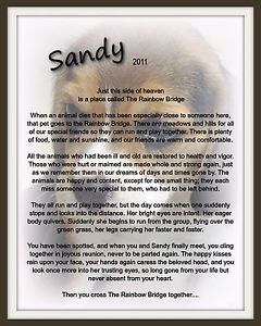Pet Memorial Rainbow Bridge Your Pet Photo with Poem Overlay Dog Cat