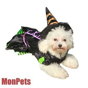 "M Chest 17"" Cute Classy Pet Dog Witch Halloween Costume Dog Clothes Pet Apparel"