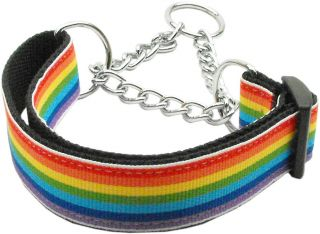 Rainbow Stripe Nylon Martingale Chain Limited Slip Loop Pet Dog Collar
