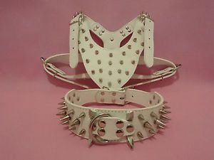 "White Leather Spiked Dog Collar Harness Set Pitbull Terrier 17"" 24"" Neck Size"