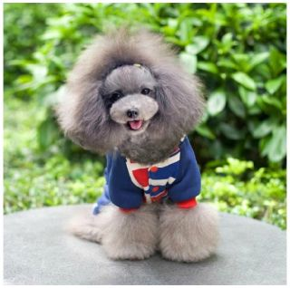 Autumn Winter Cute Flag Dog Clothing Wear Coat Warm Dog Jacket Sweater Clothes