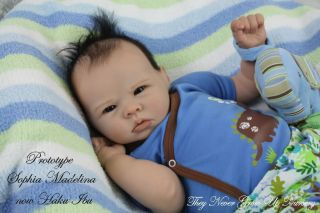 Tngun Artist Reborn Doll Prototype Sophia Bonnie Brown