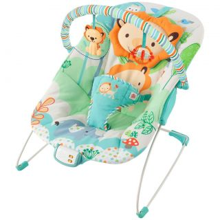 Bright Starts Playful Pals Owl Lion Bird Vibrating Bouncer Chair Seat New