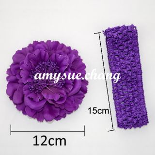 10pcs Peony Kid Baby Girl Headband Hair Band Bow Accessory Flower Clip Headwear