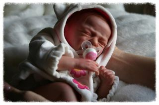 Reborn Dolls by Design Reborn Preemie Baby Girl Charli Huggable Marita Winters