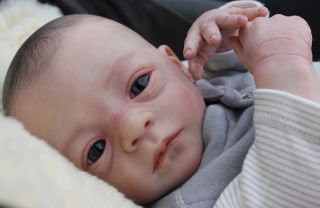 Reborn Baby Boy Doll Romeo by Natali Blick New Sculpt Little Sunshine Nursery