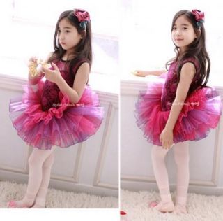 Girls Kids Clothes Dancewear Dresses Flower Ballet Tutu Dance 3 8Y Fuchsia Skirt