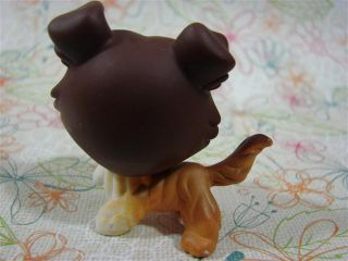 Littlest Pet Shop LPS 237 Barking Collie Puppy Dog Mouth Open Brown Caramel