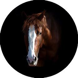 Horse 8 Custom Spare Tire Cover Wheel Cover