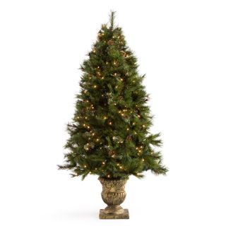 6 ft. Hard Needle Dover Pine With Pinecones Potted Pre Lit Christmas Tree   Christmas Trees