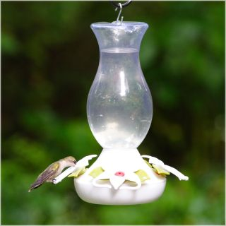 Perky Pet Hummingbird Funnel Fill Plastic Bird Feeder   16 oz.   Bird Feeders