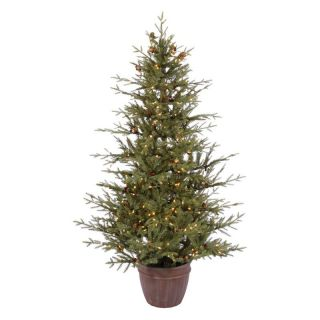 Potted Nevis Pine Pre lit Christmas Tree   Christmas Trees